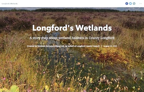 Longfords Wetlands1