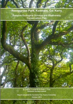 Reenagross Park Kenmare Co Kerry Baseline Ecological Surveys And Biodiversity Conservation